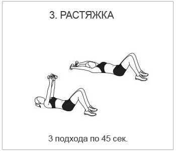 спина3