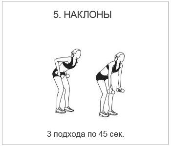 спина5