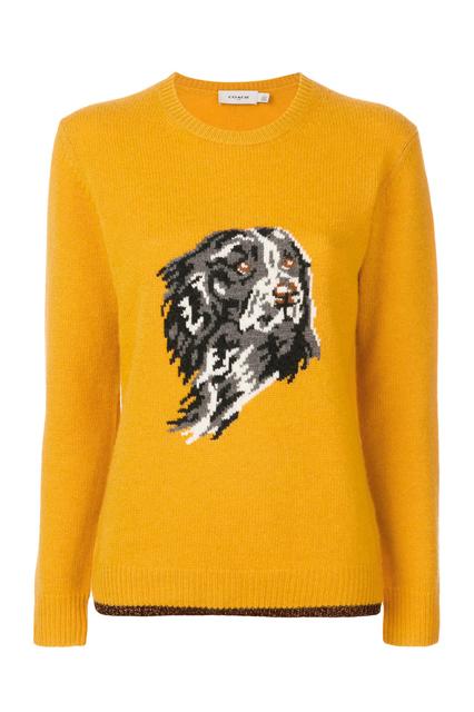 COACH dog intarsia jumper