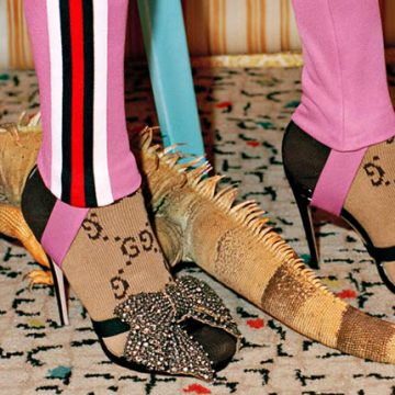 Модные новости: GUCCI 60's - вечеринка с игуанами